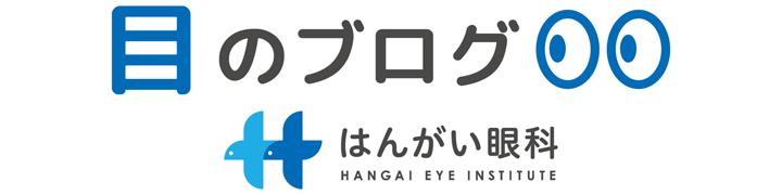 目のブログ