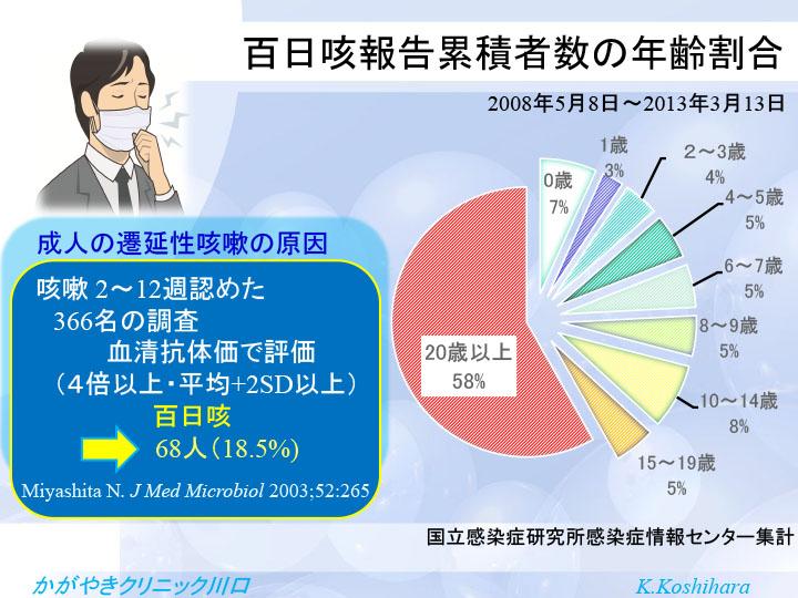 百日咳報告累積者数の年齢割合