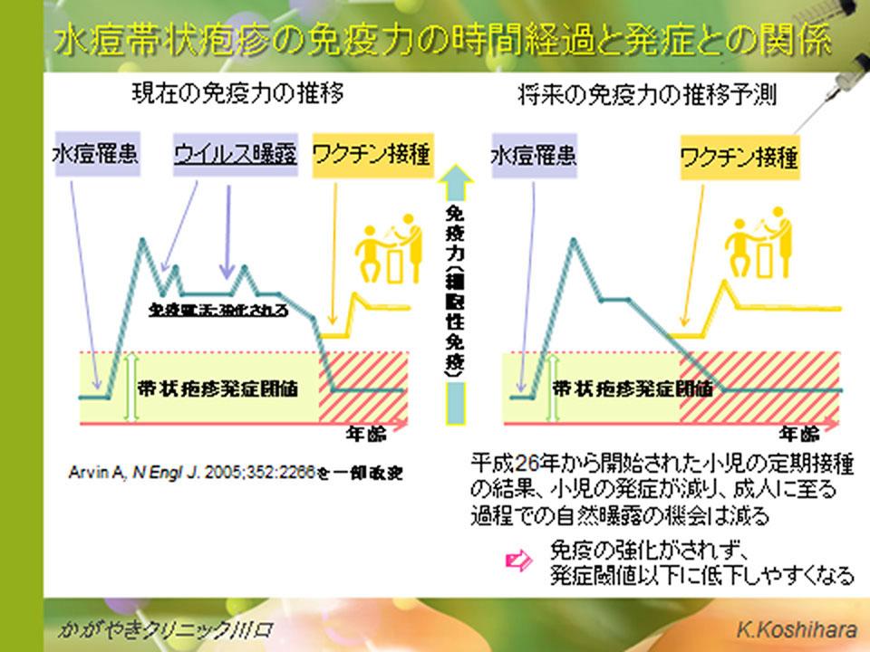 水痘帯状疱疹の免疫力の時間経過と発症との関係